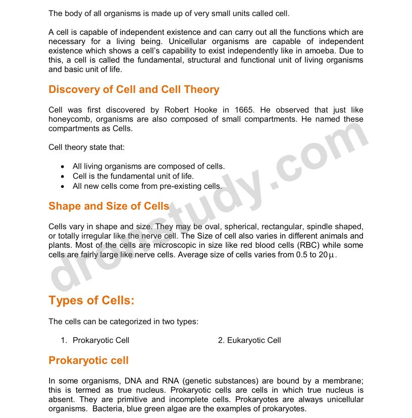 unit one grade 12 biology study notes essay Ap biology study guide for unit one don't be afraid to look back to your notes or website to refresh your one free response - 2-3 paragraph essay over a big.